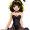 Haruhi Suzumiya Bunny Girl