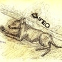 IFE Dog by Ripvanfish