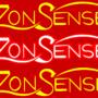 ZonSense Logo 2010 by Cyberdevil