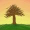 Tree at Dawn