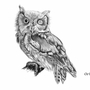 Owl tattoo concept