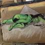 green gal by Allisawn