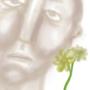 lil flower by doomshock