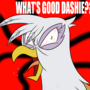 WHAT'S GOOD DASHIE???