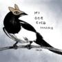 My Doe Eyed Magpie 2