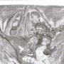 Astaroth SCIV by darkwars