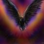 black bird by TrojanMan87