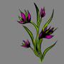 Magenta Flowers by samally78