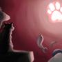 Cat Void by johnnydpanda