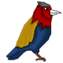Bird by Amir027
