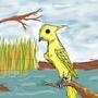 a random bird by annalp