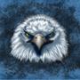 Eagle by sorenare7