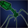 The Bacteriophage by Zolen