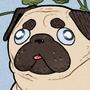 Floral Pug