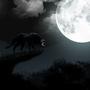 Full Moon by JudePerera