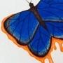 Butterfly by legendofslotha