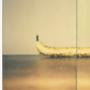 welcome to banana world