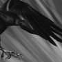 Crow by 6khaos9