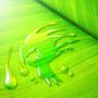Zeonmarine Drops by spyrofhinic