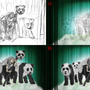 The Panda Guide--Process Shots