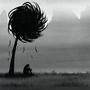 The Last Truffula Tree