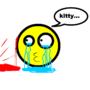 When kitty die... by zjustkissme