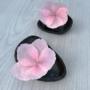 Sakura by AniMate