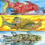 Sky-Seacreatures