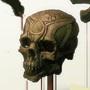 Skull Honey by jaccabe