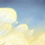 Jellyfish Clouds