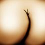 Nude Post by ApocalypseCartoons