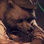Jazz bear by FarturAst