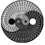 yin yang by gray1