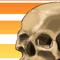 Summer Skull