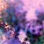 Pixelated by BenjaminTibbetts