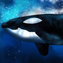 Killer whale by Chriss19
