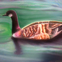 Canada Goose painting by KaPika735