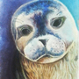 Seal painting by KaPika735