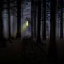 Dark Forest by damn99