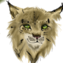Lynx by GravesTail09