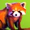 Pandas of Rouge