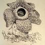 #045_Vileplume by Manguinha