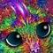Star Kitty Gamma
