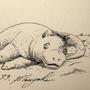 #078_Slowpoke by Manguinha