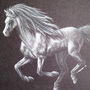 Silver Horse by krissalus