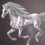 Silver Horse