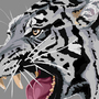Tiger Update by Clootie