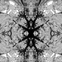 Rorschach 2 by BenjaminTibbetts