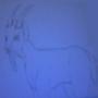 Goat by TheGreySage
