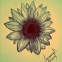 Sunflower by IndigoRae